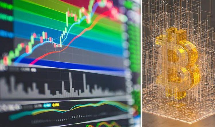 5 chiến lược đối phó với biến động thị trường
